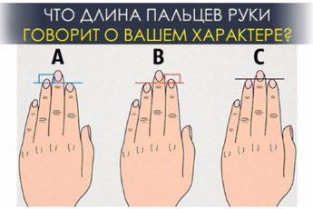 Что длина пальцев руки говорит о вашем характере