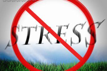 Как снять стресс за несколько минут